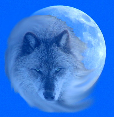 January Wolf Moon Symbolism Symbolic Meanings Blog By Avia Venefica