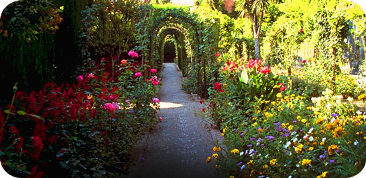 Gardens: Symbolic of Sacred Spaces