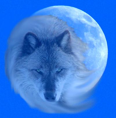 WolfMoonSymbolism
