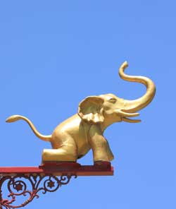 elephant trunk up meaning
