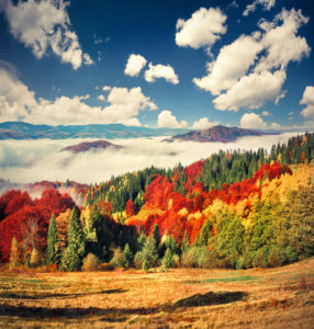 Autumn Meaning Mabon Meaning